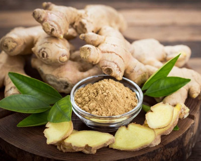 Ginger Producer